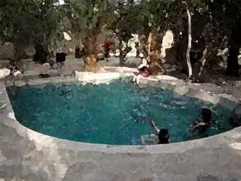 Property  for Sale in luxor