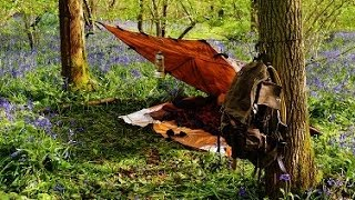 "The Essence of Bushcraft: ""A Night In The Woods"""