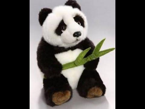 Zumba® Kids, Krupka, Tropical Panda