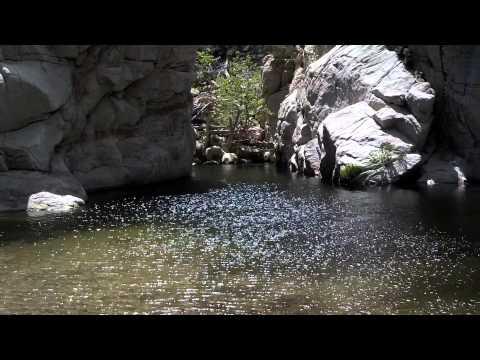 Deep Creek,CA Brown Trout Fishing Pools