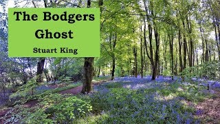 The Bodgers ghost - Stuart king