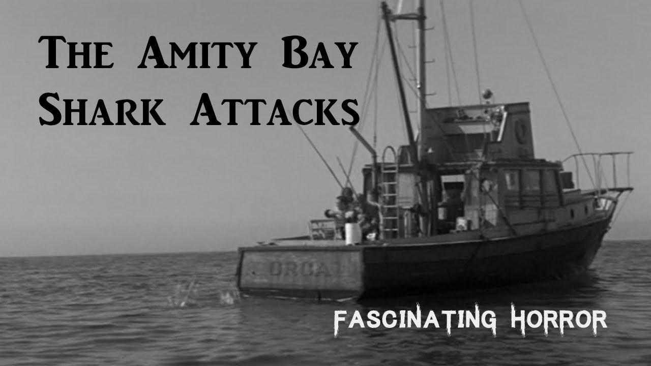 The Amity Bay Shark Attacks   Fascinating Horror