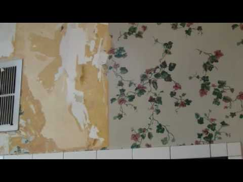 Removing Paper Backed Vinyl Wallcovering With The Hohlenpoker