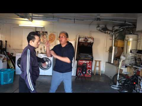 Combat Taiji - Applying the Double Spear Hands from the Old Yang Form
