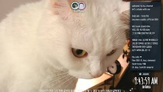 2018/06/25 : ~ 11pm 실시간 공부방송 study with me, I wish you good luck
