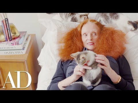 Here's Proof That Cats Are The World's Cleanest Creatures   Architectural Digest