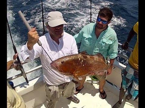 Panama City Beach Fl Deep Sea Fishing Grouper Red Snapper