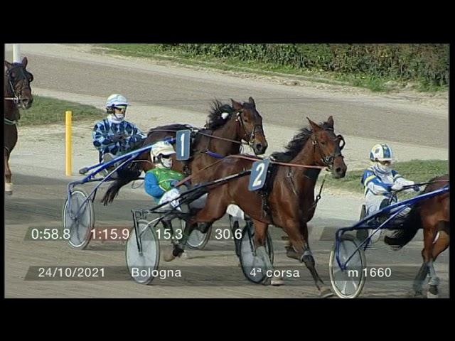 2021 10 24   Corsa 4   Metri 1660   Premio Lions Melvin Jones