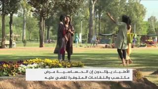 الحساسية تغزو إسلام أباد في موسم الربيع