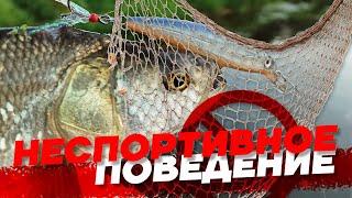 Ловим рыбу и уничтожаем сети