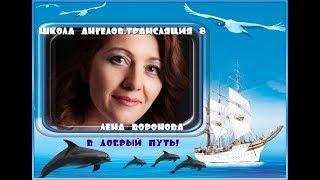 Трансляция 8 - полная версия /Лена Воронова
