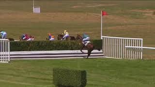 Vidéo de la course PMU GRAND STEEPLE-CHASE DE DIEPPE
