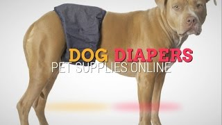 Buy Dog Diapers and Get Cashback