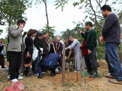 Tết Trồng cây Xuân Tân Mão 2011 tại Chùa Phật Tích