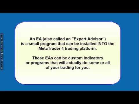 United forex traders rentabilidad