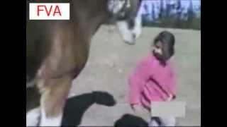 доигралась с лошадью