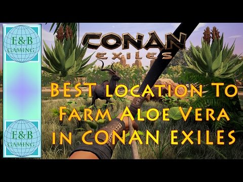 Conan Exiles - Best Location to Farm Aloe Vera for Healing and Regeneration Potions
