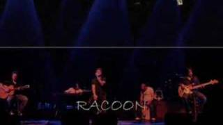 Watch Racoon Never Alone video