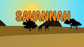 Diviners  Savannah (feat. Philly K) [Official Lyric Video]