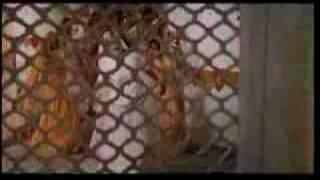 Kehna Hi Kya - Bombay - Hindi