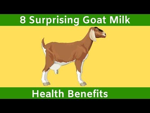 8 Surprising Goat Milk Health Benefits