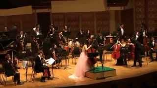 HKAO Pink Symphonic Night 8 feb 2015 part 4