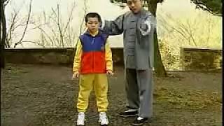 KOU-楊式太極拳85式教学上(傅清泉)