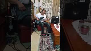 HARTKE HD 50 BASS AMP played by HAKI KARAJCIC