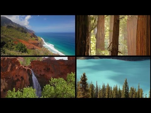 A Nature Relaxation Journey (Part 1) 1080p HD Visual Experience