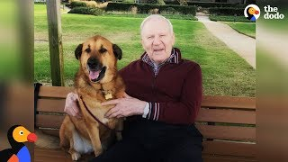 Man With Alzheimer's Loves Visits From His Favorite Dog | The Dodo