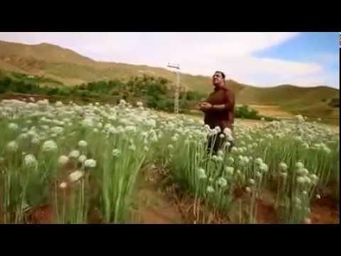 Waheed Achakzai New Songs 2015 Tapey Pashto New Song 2015   YouTube