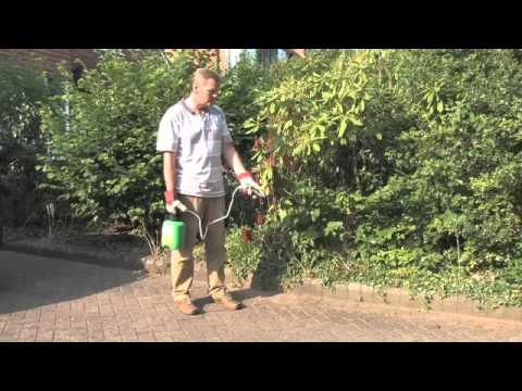 Roundup Pump N Go on Block Paving | Videos | Roundup Weedkiller