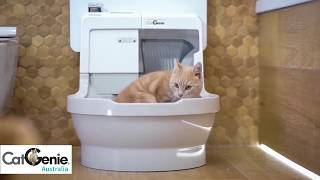CatGenie Self-Washing Cat Litter Box