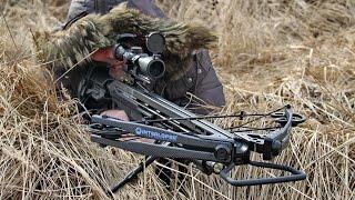 Как пристрелять арбалет и оптический прицел   Пристрелка арбалетов Тактик