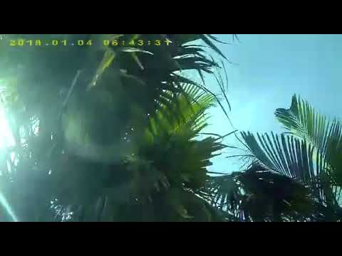 Fatal Robbery at Fortune Club, Port Moresby, Papua New Guinea