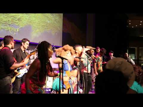 Special live by Cast of Fela kuti