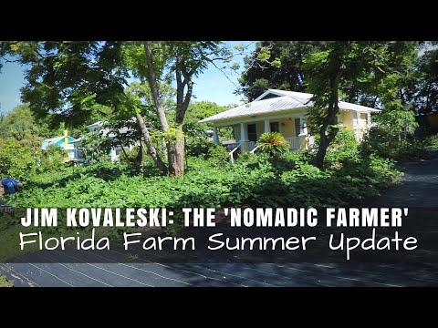 Jim Kovaleski, the 'Nomadic Farmer': Florida Farm Summer Update to $5.6K Gardening Other Yards