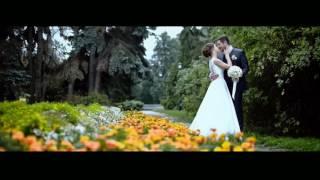 #TOPSHOWMEN Ведущий Денис Додонов. Свадьба Анны и Дмитрия.