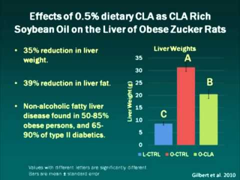 CLA Rich Oil - Improving Soy Oil Nutritional Value Through Processing