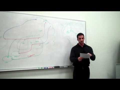 Basal Ganglia part 2: Therapy - Ben Glasman
