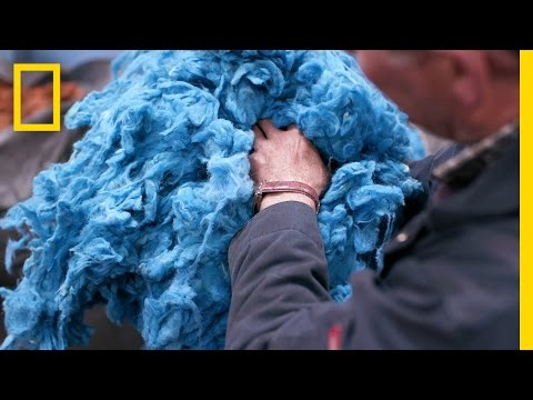 Weaving Tradition: How Tweed Keeps a Community's Heritage Alive | Short Film Showcase