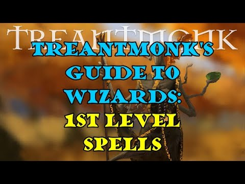 Treantmonk's Guide to Wizards: Level One Spells
