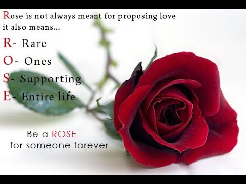 Love and  Rose Day Greetings - Love and Rose Cards Video 2017