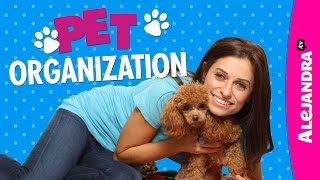 Pet Organization