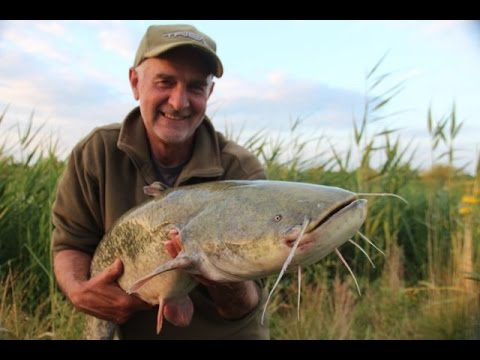 Catfishing With Mick Brown - How To Catch Your First Catfish (Video 98)