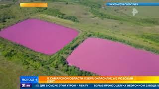 Под Самарой нашли розовые озера неизвестного происхождения
