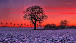 The Fountain - First Snow by CLINT MANSELL