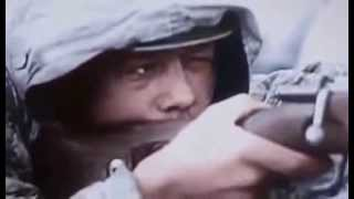 THE GERMAN INVASION OF RUSSIA   Military History   World War II   Documentary