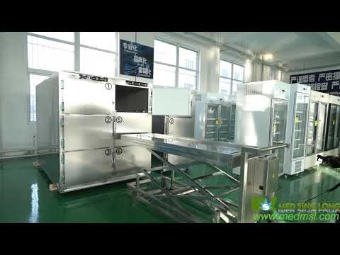 Hospital Morgue Refrigerator Manufacturers Operation