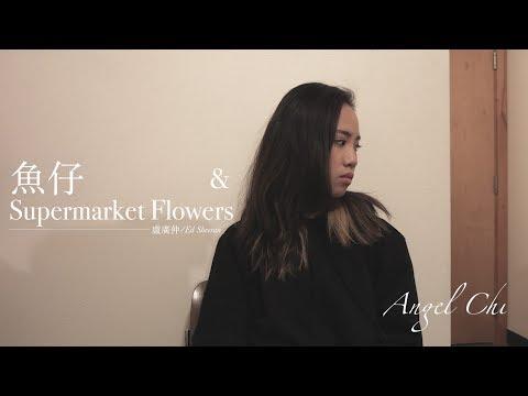 魚仔/Supermarket Flowers - 盧廣仲/Ed Sheeran (改編mashup) Angel Chi